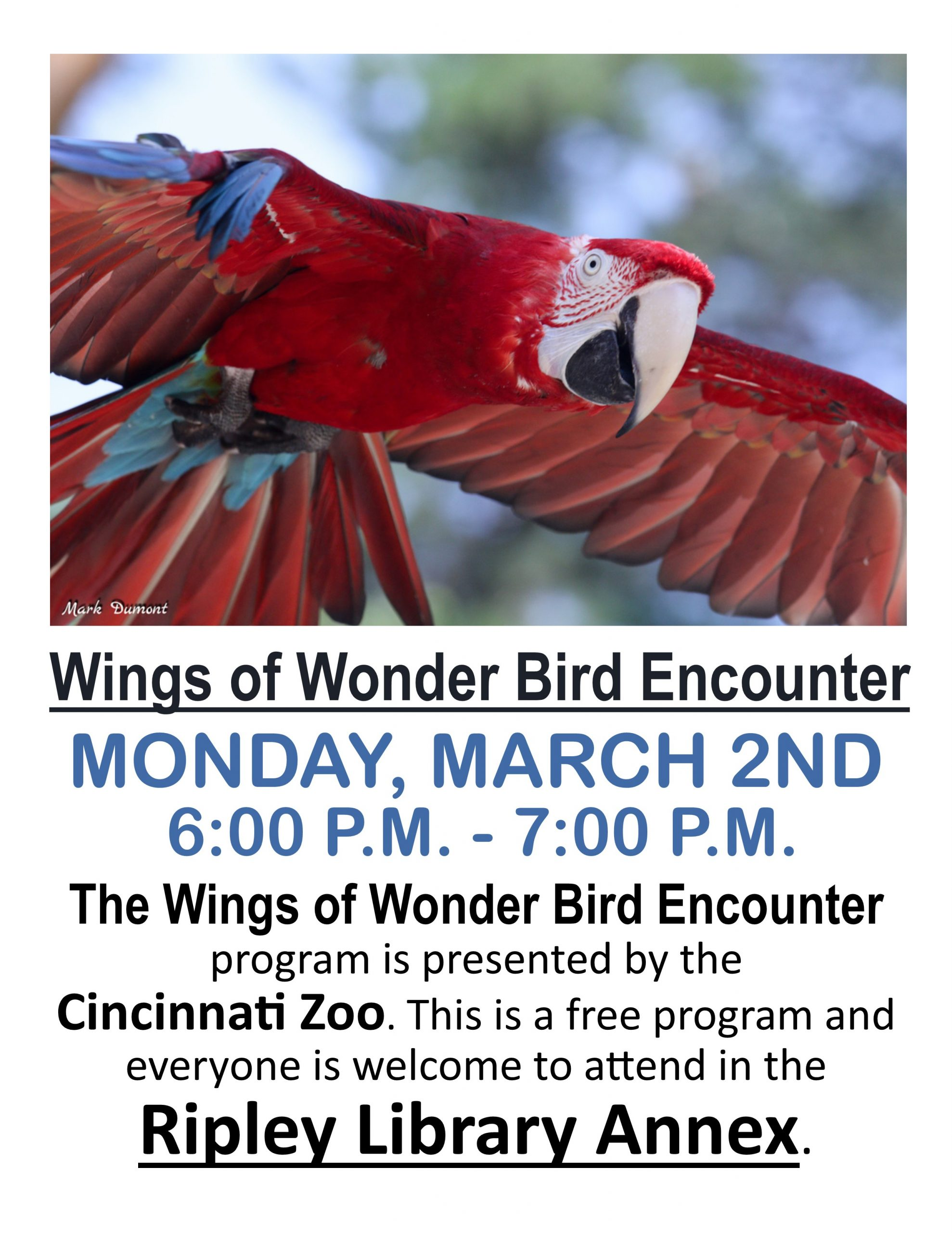 Wings of Wonder Bird Encounter